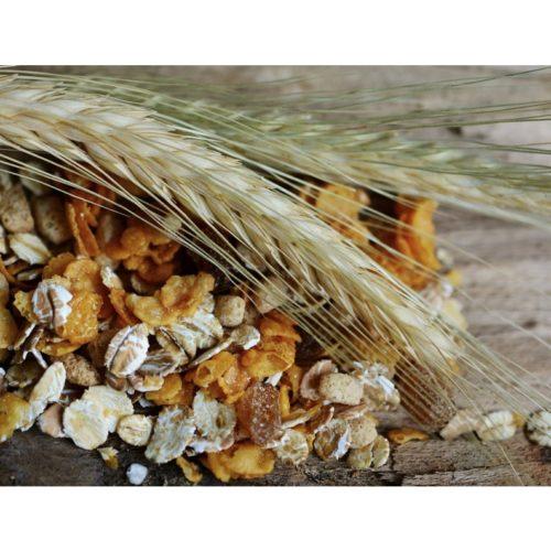 Muesli, céréales et flocons